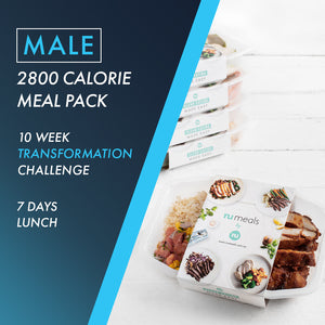 Male 2800 Lunch 7 Days