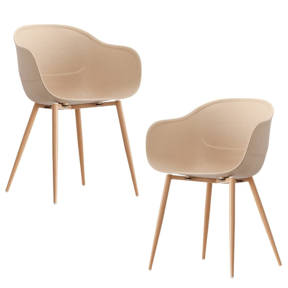 Jayden Natural Charming Beetle Dining Chair Set of 2