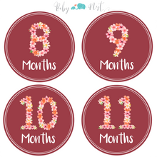 Load image into Gallery viewer, Baby Monthly Milestone Stickers - Flower Bouquet | Set of 16