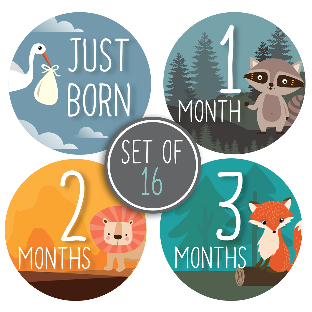 Baby Monthly Milestone Stickers - Woodland Animals | Set of 16