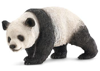Giant Panda  - Female