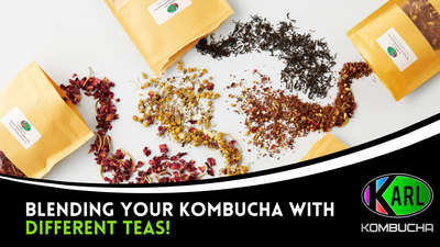 Blending your Kombucha with different Teas!