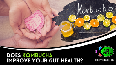 Does Kombucha Improve your Gut Health?