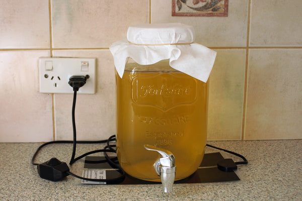 Kombucha heat Mat, help your scoby stay warm!