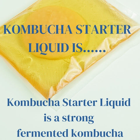 Kombucha Starter Liquid is a strong fermented kombucha. The stronger your kombucha starter liquid is the better your kombucha, the faster it ferments and reduces any issues regarding mould
