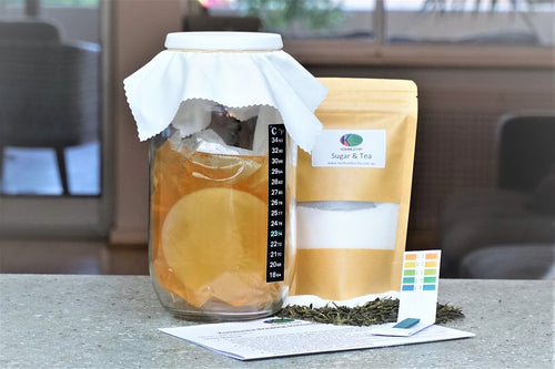 karl kombucha 2L brewing kit with scoby, Kombucha brewing easy