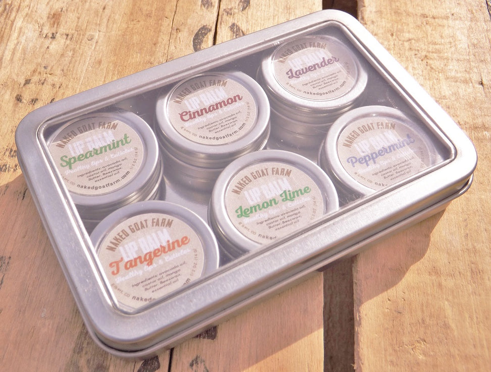 Lip Balm Sampler Pack - nakedgoatfarm