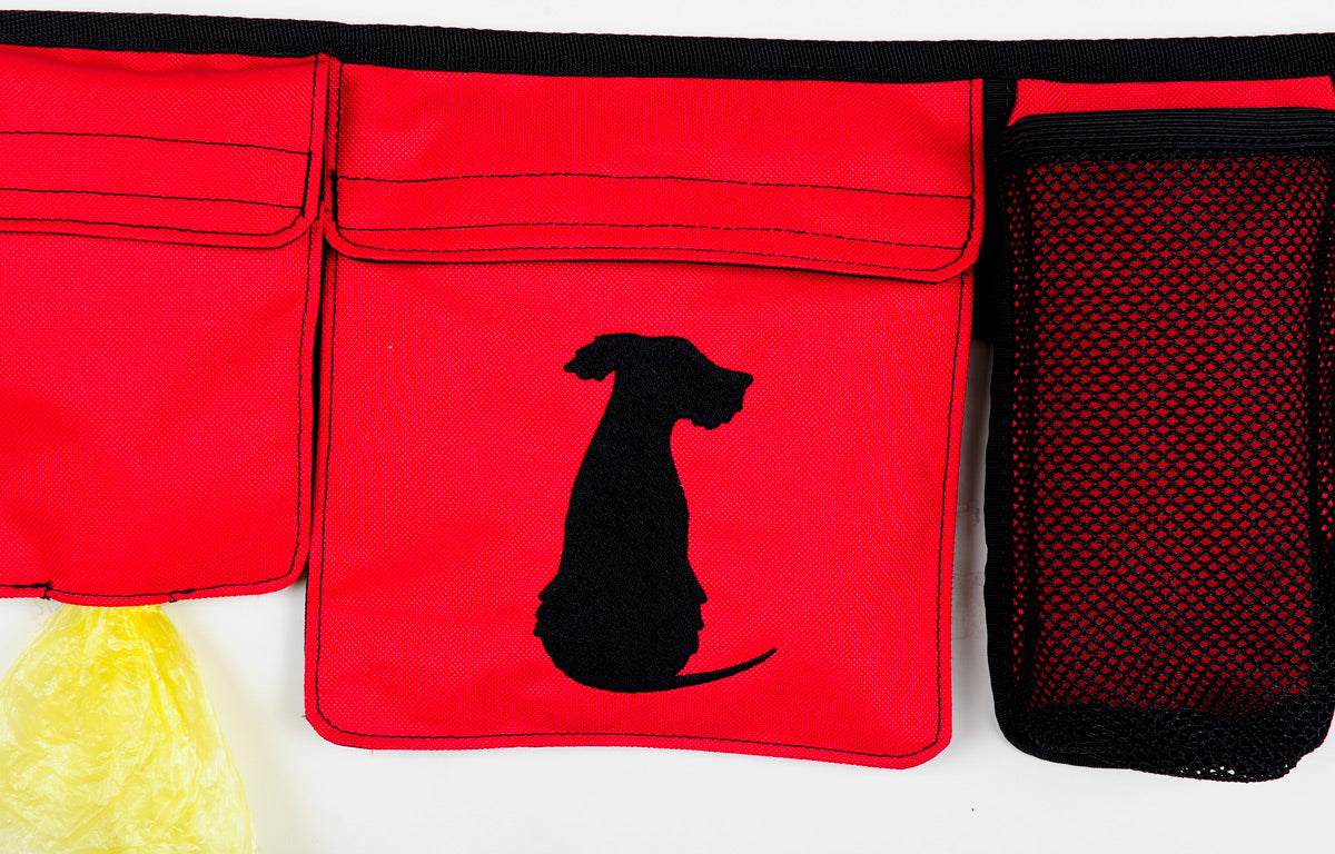 Rescue Rover Red Dogipack