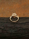 Golden Nevin Zirconia Ring