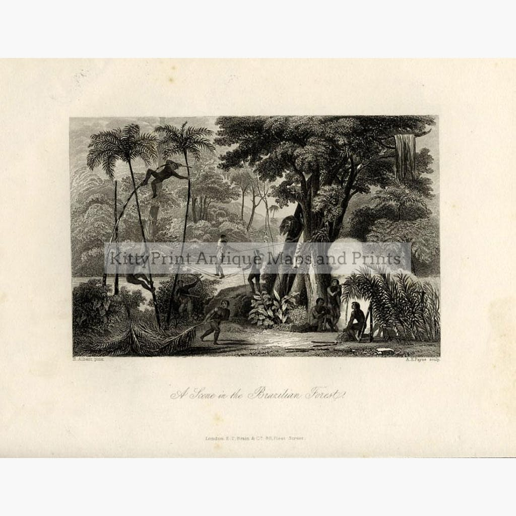 A Scene in the Brazilian Forest 1847 Prints KittyPrint 1800s Central & South America Genre Scenes