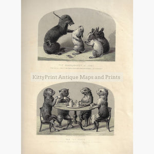 Antique Print Comical Creatures c.1860 Prints