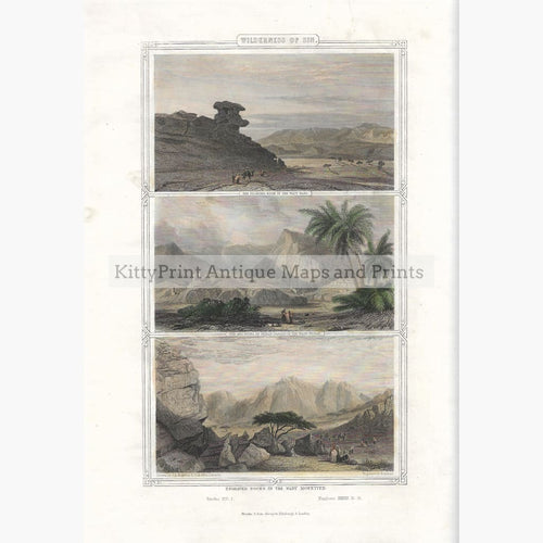 Antique Print Wilderness of Sin 1855 Prints