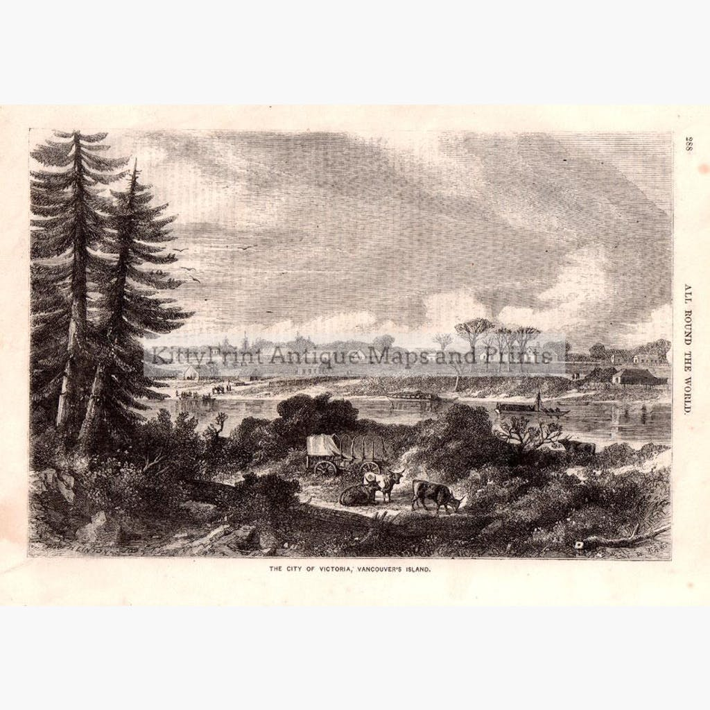 City of Victoria Vancouver Island 1861 Prints KittyPrint 1800s Canada & United States Townscapes