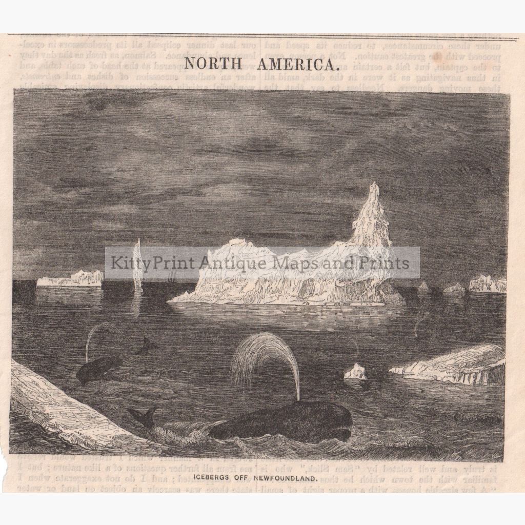 Icebergs Off Newfoundland 1861 Prints
