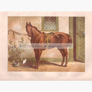 The Roadster 1880 Prints KittyPrint 1800s Horses