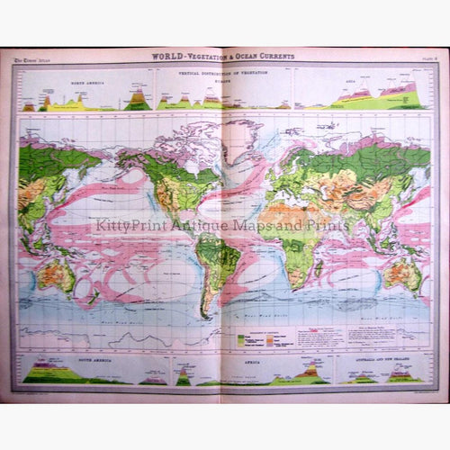 World Vegetation and Ocean Currents 1922 Maps KittyPrint 1900s Climate Vegetation World Maps