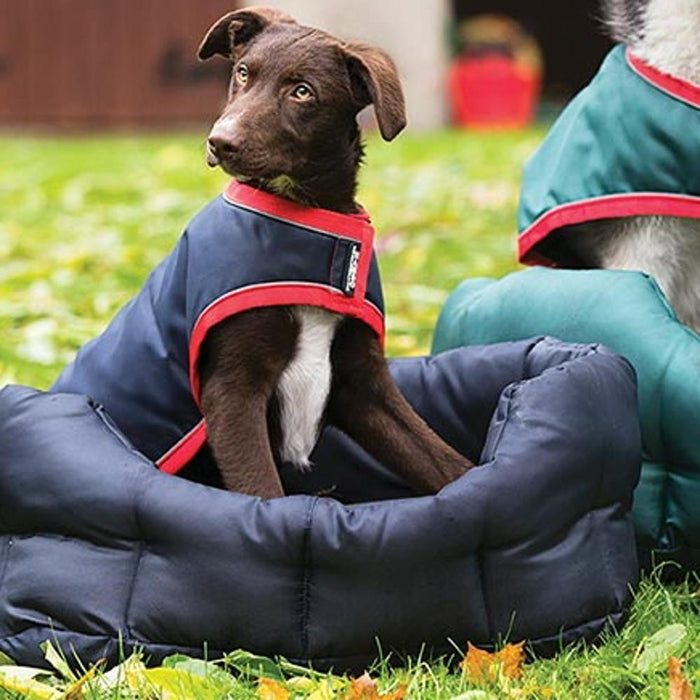 Horseware Rambo® Dog Bed in Navy