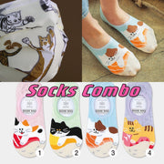 [Sock Combo] My Curious Cats (Made in Taiwan) + Sushi Cats Socks!! (Made in Korea)