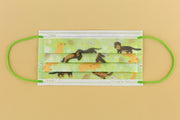 Dachshund DRX Taiwan 30pcs CNS14774 | FDA【MADE IN TAIWAN】