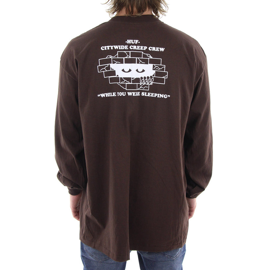 While You Were Sleeping Long Sleeve Tee/Brown