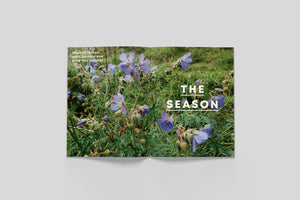 Bloom  - 6 The Summer Issue