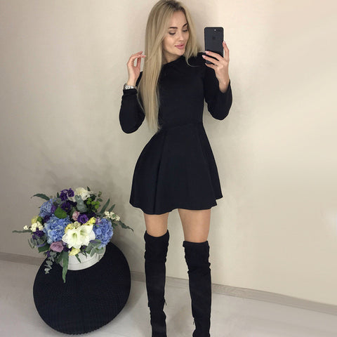 Elegant Mini Winter Dress