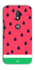 Digiprints Tropical Watermelon Designer Printed Back Case Cover For Motorola Moto E3 Power