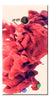 Digiprints Abstract Red Smoke Cloud Printed Designer Back Case Cover For Microsoft Lumia 730