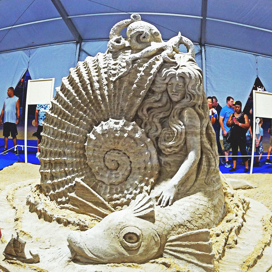 Seven Sharks At Virginia Beach Neptune Fest 2018 Sand Castle War