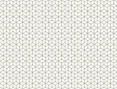 black and white pattern, black and white geometric, box design, modern design, modern box design,