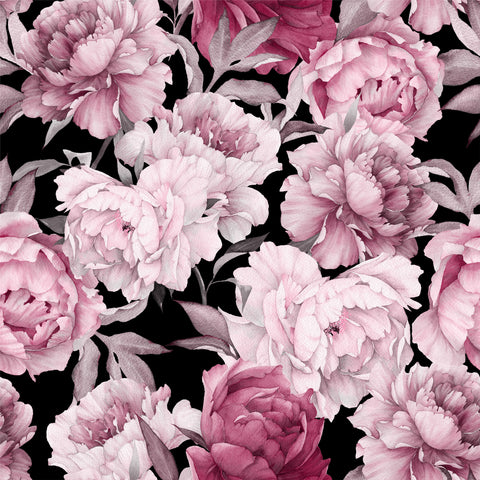 peonies, peony with a black ground, large scale floral, big flowers, large flower mural, large scale floral wallpaper,