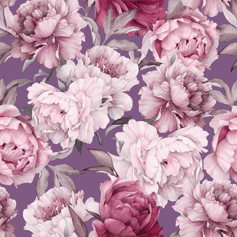 peony, peonies with a purple ground, purple, floral wallpaper, large scale florals,