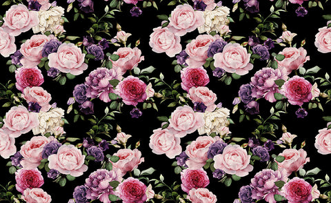 Rose garden, large flower with a black background, as seen on tv, large floral, large pink rose,