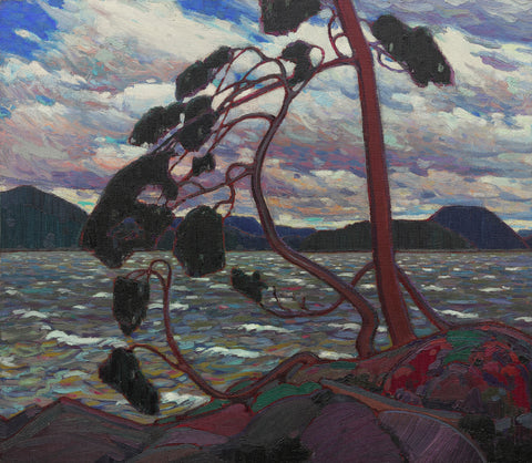 Tom Thomson, famous painting, trees, ago archives, ago images, Tom Thomson art,