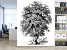 Engraved Oak tree / Trees