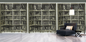 antique book case mural. bookcase wallpaper.