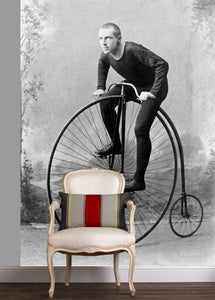 Penny-farthing / Vintage