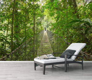 Rain forest bridge / Zen