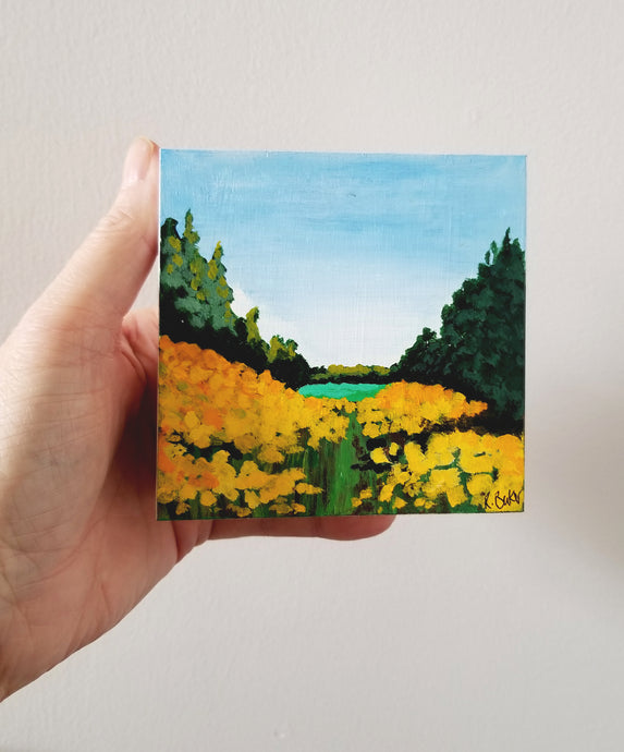 miniature canvases, small artwork to buy online,