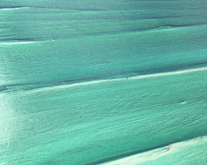 Abstract Sea painting by Carl West - Tropical close up