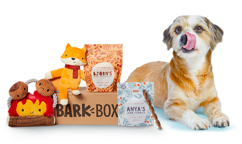 BarkBox Subscription for Dogs Free Extra Toy This Week Only