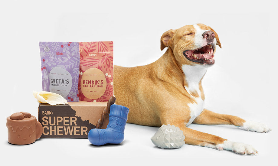 Bark Super Chewer by BarkBox Free Toy Offer