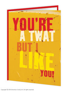 You're a twat but i like you rude birthday card