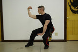 Premier Power/Strength Pack (Includes instruction by Sifu Allen!) DVDs ONLY