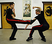 Youth Fist Two-Man Set (Ching Nein Ch'uan)