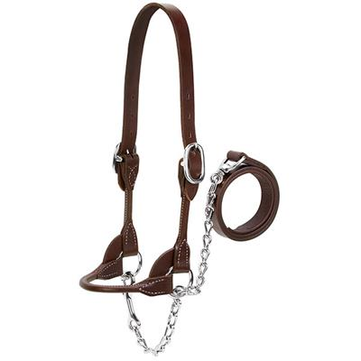 Image of Beef Rounded Show Halter
