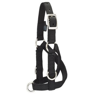 Sheep/Goat Training Halter