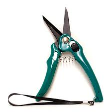 Burgeon EZ Trim Shears