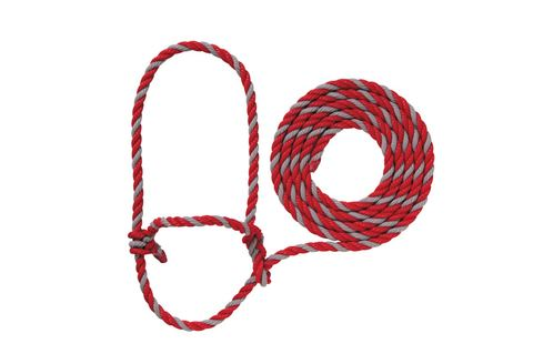 Halters Rope Cattle