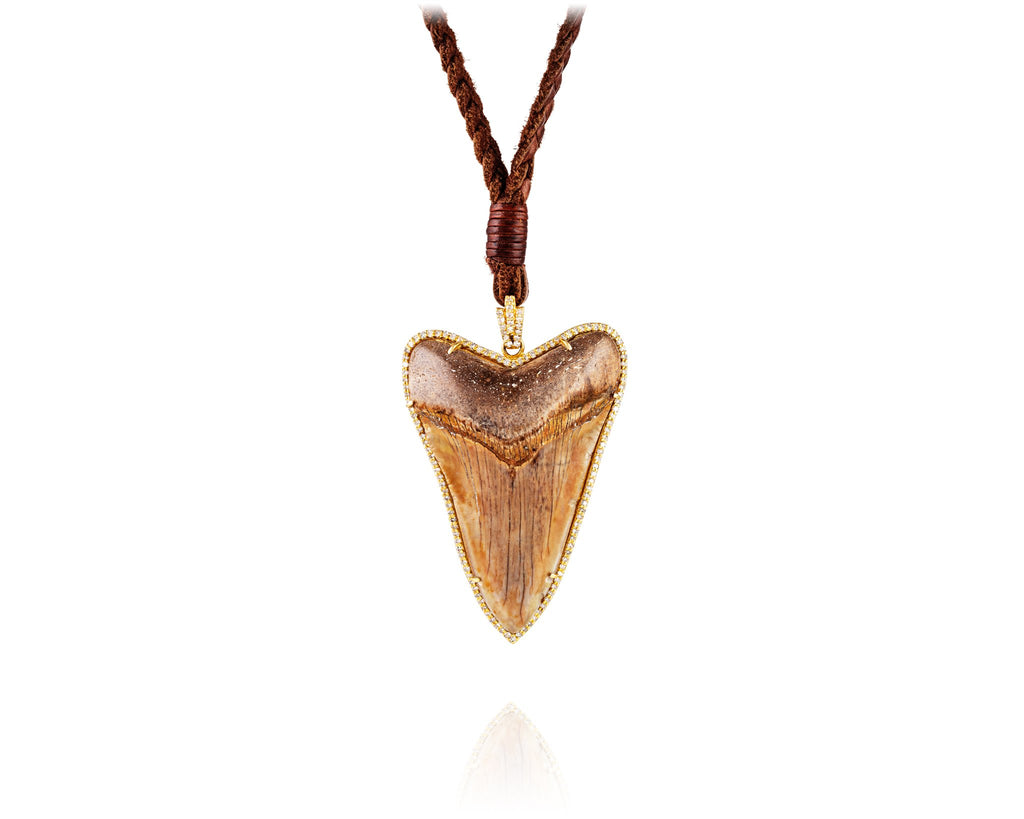 Prehistoric Megalodon Tooth Necklace with Pavé Diamonds & 14kt Gold
